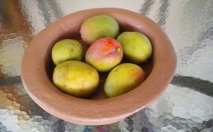 Mango Julie - Bowl by Rustic Selections